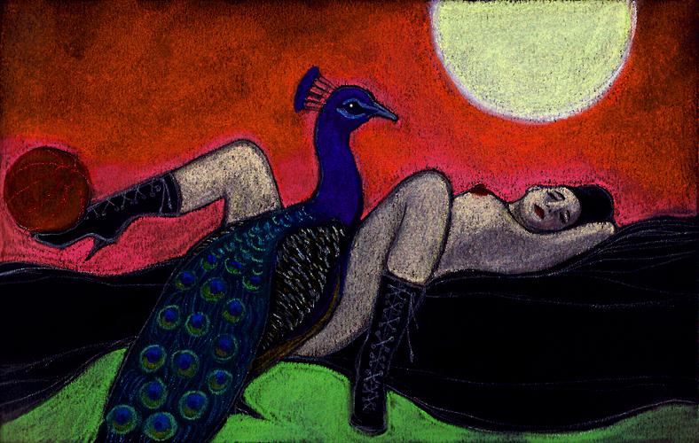 Illustrazioni-Piccolo e oscuro scrigno-Il pavone