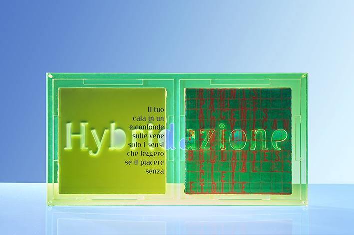 Libri d'artista-Hybridazione-Cofanetto
